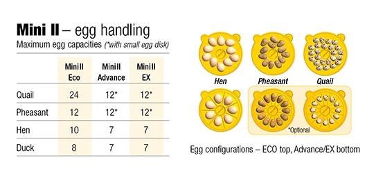 brinsea mini incubators rh brinsea com Sound Echo Diagram Echo 1 416 Parts Diagram