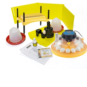 Maxi Classroom incubator and brooder pack